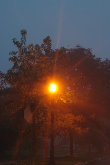 lightpoleshine2011j
