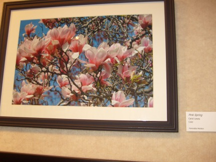 Honorable Mention in Spring art show 2012