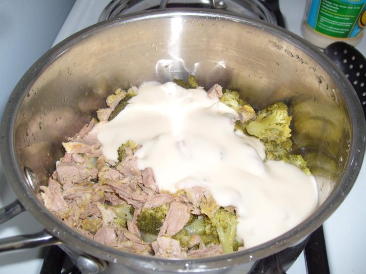 Turkey, brocolli & Lowfat Alfredo sauce