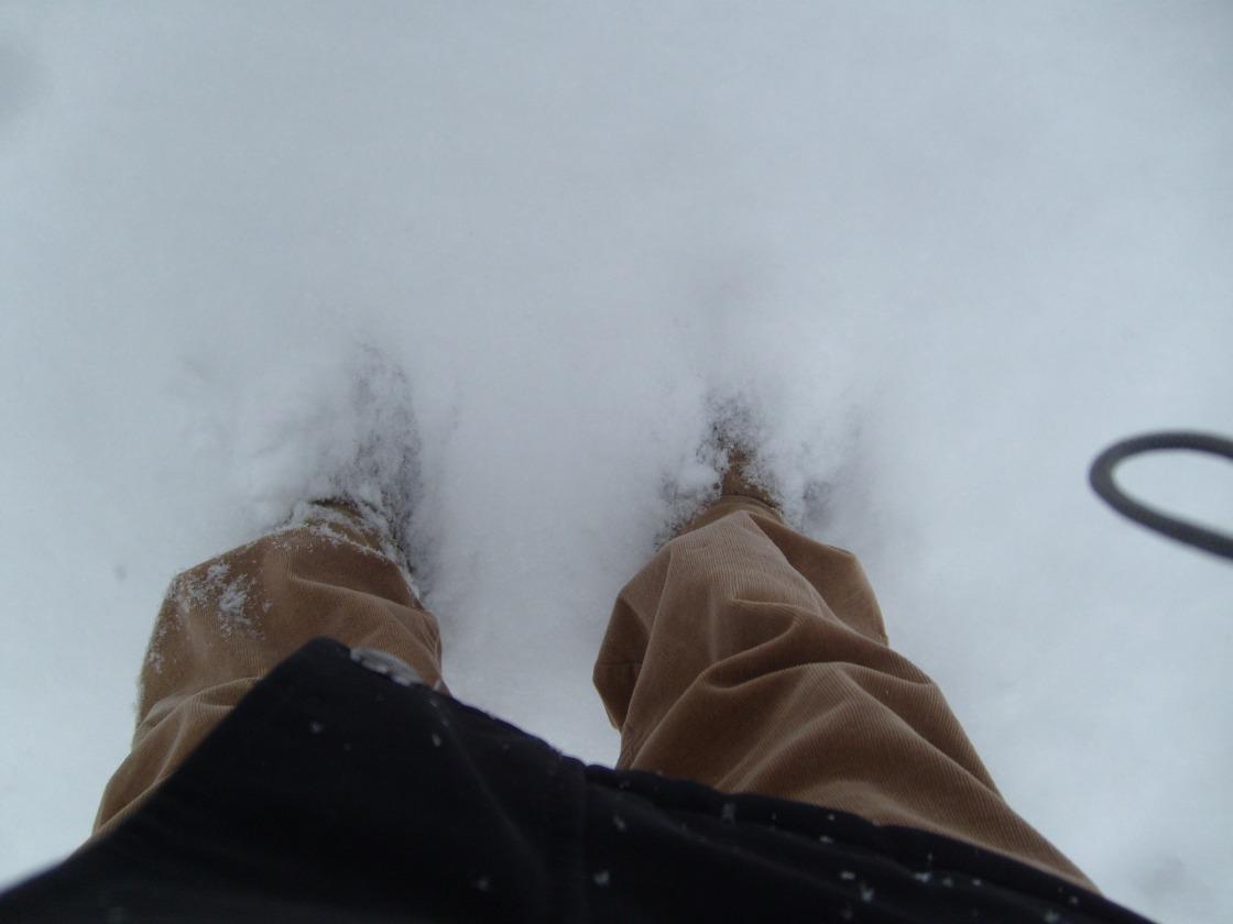 FeetForward