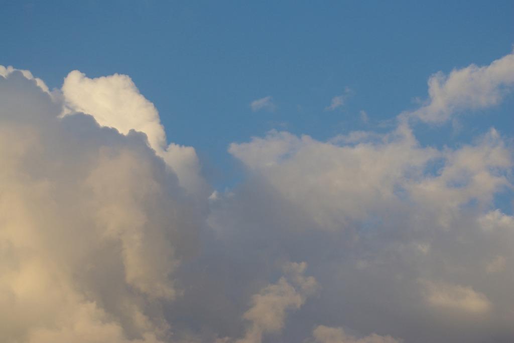 Fair Sky