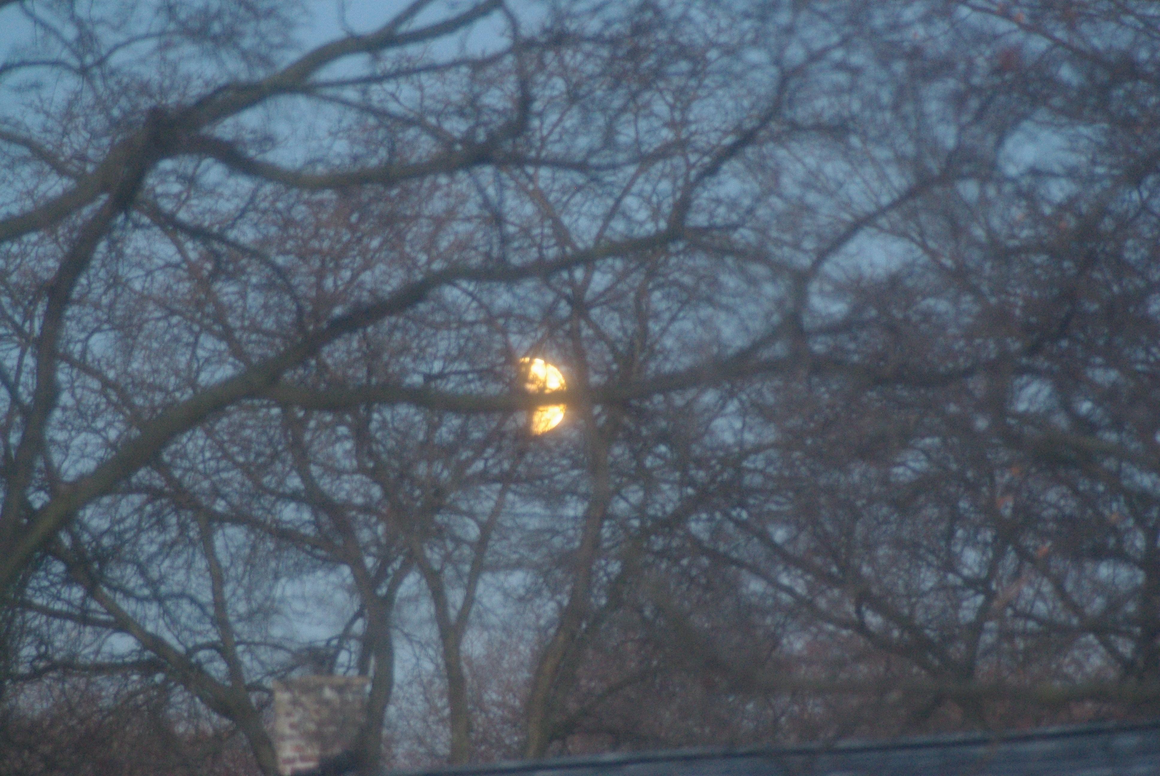 AprilLunarEclipse 020