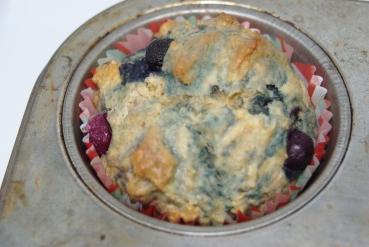 BlueberryMuffins 009