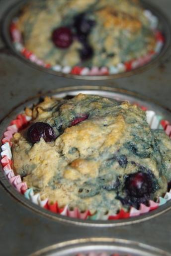 BlueberryMuffins 019