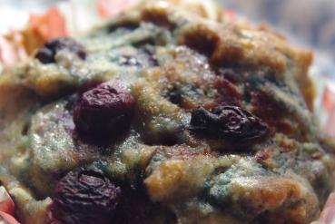 BlueberryMuffins 102