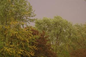 rainydaystorm 042