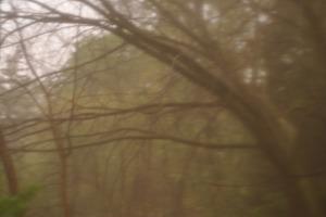 rainydaystorm 047
