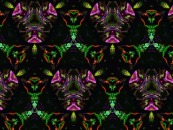 PhotoImpact Kaleidoscope