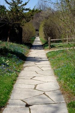 Landscape2April Spring 087