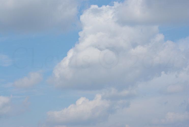 Clouds2009flrsMisc2009octvarioustreedamage 243