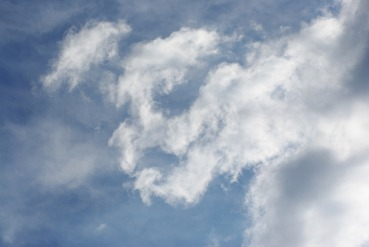 Clouds2009flrsMisc2009octvarioustreedamage 259