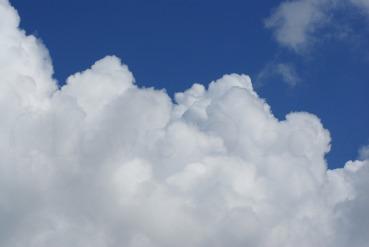 Clouds2009flrsMisccloudsummer2009 023