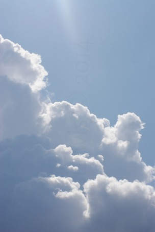 Clouds2009flrsMisccloudsummer2009 027