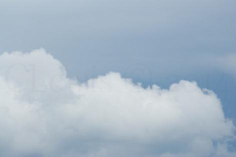 Clouds2009flrsMisccloudsummer2009 029