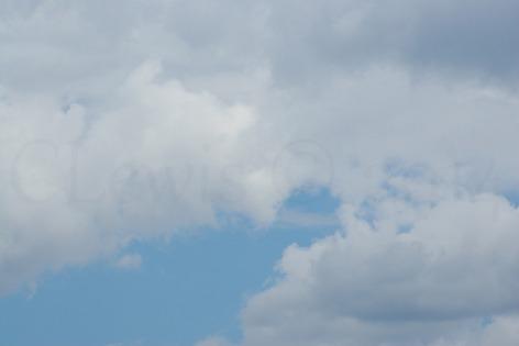 Clouds2009flrsMisccloudsummer2009 031