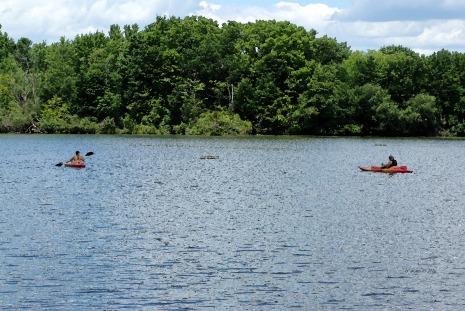 Mill Pond kayaking