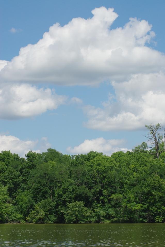 Mill Pond Tecumseh 084