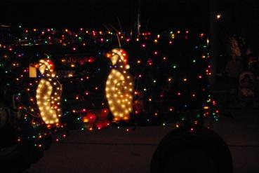 dectecumsehchristmasparade-094
