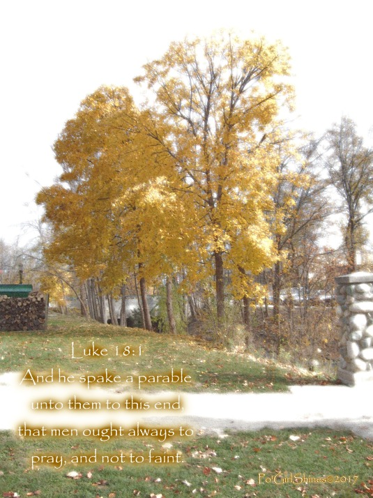Luke 18 1 yellow trees