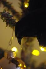 Christmas decor 2 104