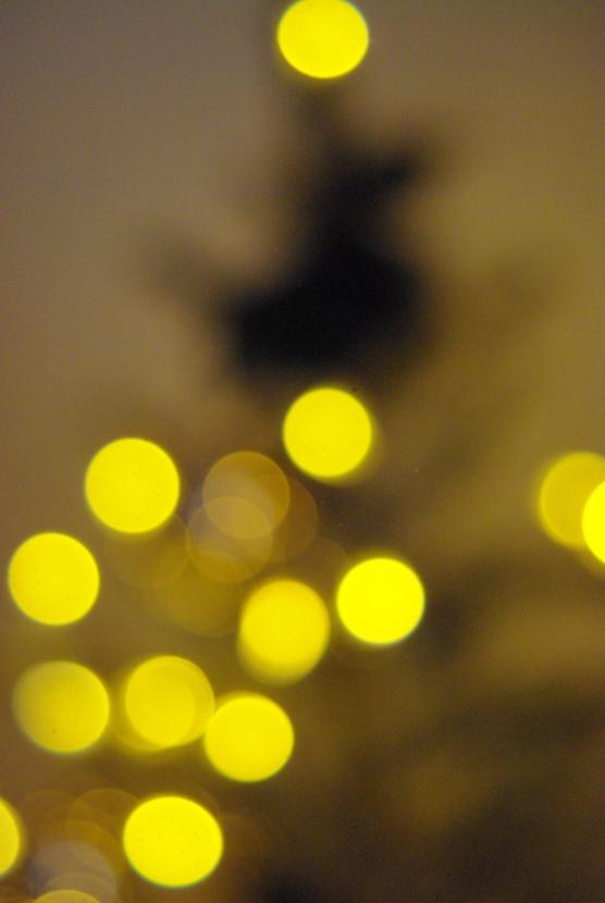 Christmas decor 2 114