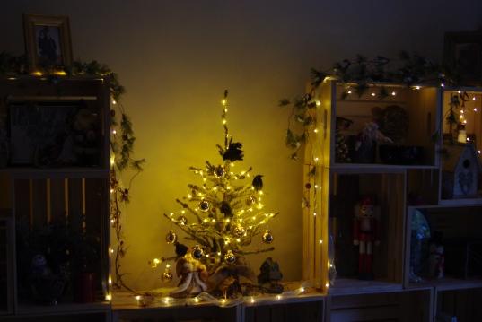 Christmas tree 018
