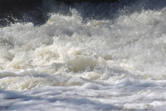 Rouge River
