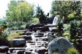 Frederick Meijer Gardens