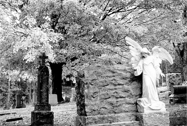 blk wht cemeterycemetarybwPicture1