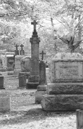 blk wht cemeteryCreepyCemetaryHalloweenPicture4 2