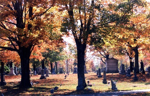 Blog HalloweenCemetery Fall 10
