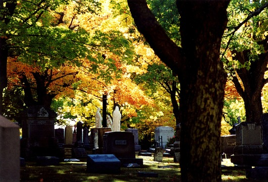 Blog HalloweenCemetery Fall 12