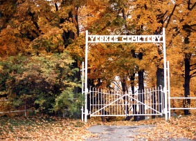 Blog HalloweenCemetery Fall 2
