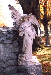 Blog HalloweenCemetery Fall 5