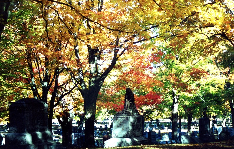 Blog HalloweenCemetery Fall 7