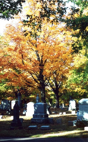 Blog HalloweenCemetery Fall 8